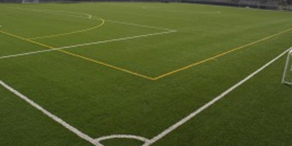 Sports Halls & Pitch