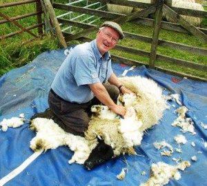 Eric shearing
